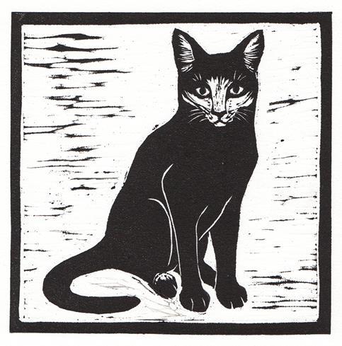 cat (Copy)